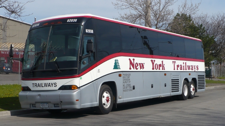 Who Are The Major Bus Providers In The USA How Do They Compare - Bus tours usa