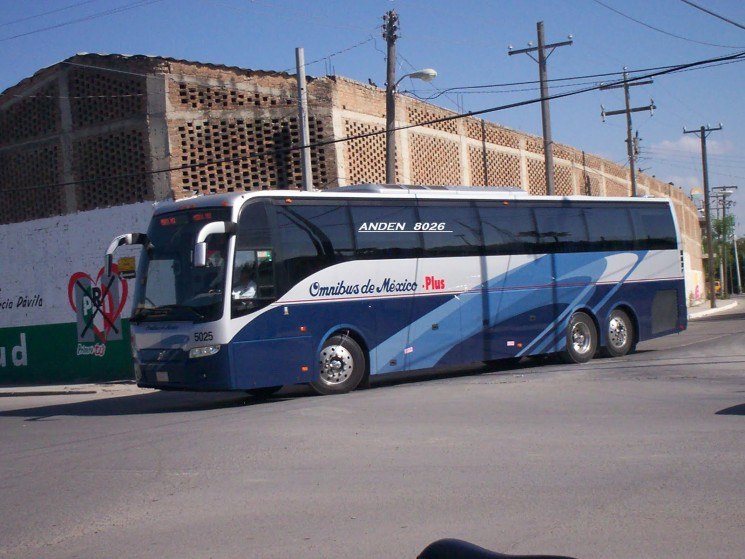 Who Are the Major Bus Providers in Mexico & How They Compare
