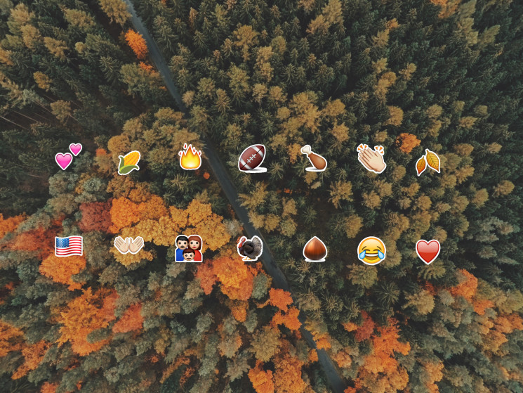 The Most Used Thanksgiving Emojis & The Rise of the Turkey